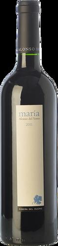 Alonso del Yerro María 2014