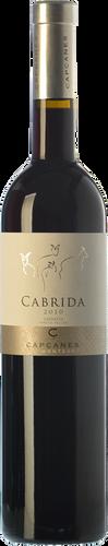 Cabrida 2016