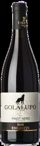 Endrizzi Trentino Pinot Nero Riserva Golalupo 2016