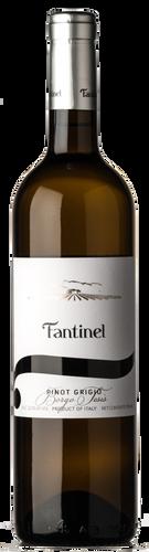 Fantinel Friuli Pinot Grigio Borgo Tesis 2019