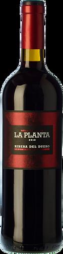 La Planta 2019