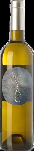 Bivac Blanc 2018