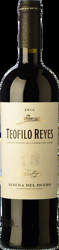 Teófilo Reyes 15 Meses 2016
