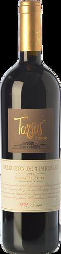 Tarsus Terno 2016