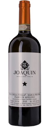 Joaquin Fiano di Avellino Vino della Stella 2017