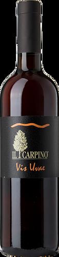 Il Carpino Pinot Grigio Vis Uvae 2015