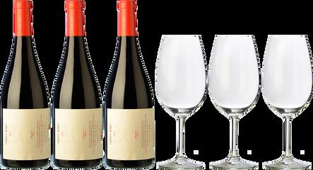 3 Ferrer Bobet + 3 FREE wine glasses