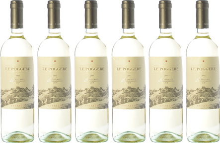 Box Falesco 6 bottles