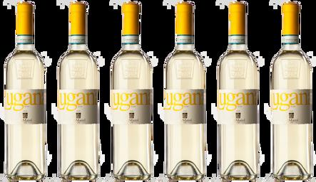 Box Lugana 6 Flasche