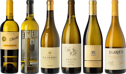 Northern and Southern Chardonnays