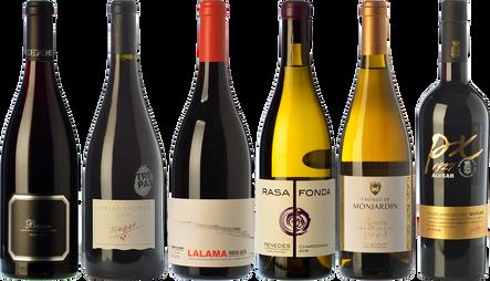 Autumnal wines