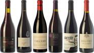 Essential wines from Conca de Barberà