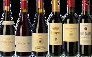Les indispensables du Rioja