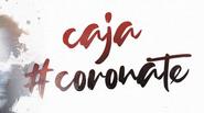 Caja solidaria #coronate